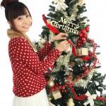 クリスマスツリーのオーナメント!おしゃれな星やりんごならコレ♪