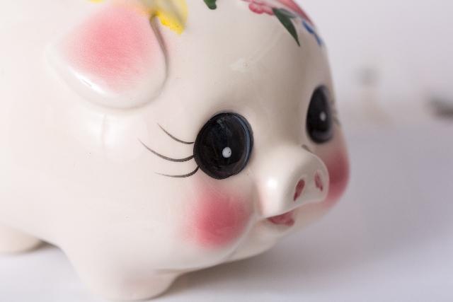 MEC食に絶対必要な豚肉の豚ちゃん