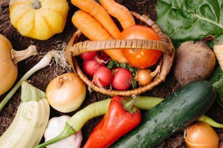 脂肪燃焼スープの野菜たち